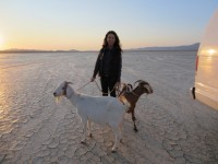 Meg and goats